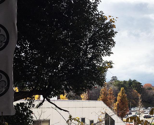 曳馬古城跡東照宮からは復興天守閣が遠望出来浜松城域の広大さが実感出来る(2015年12月12日撮影)