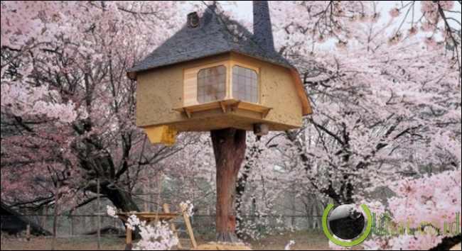 Rumah Minum Teh Jepang