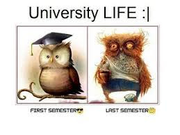 university life - real situation