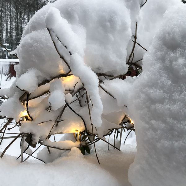 snö, ljusslinga