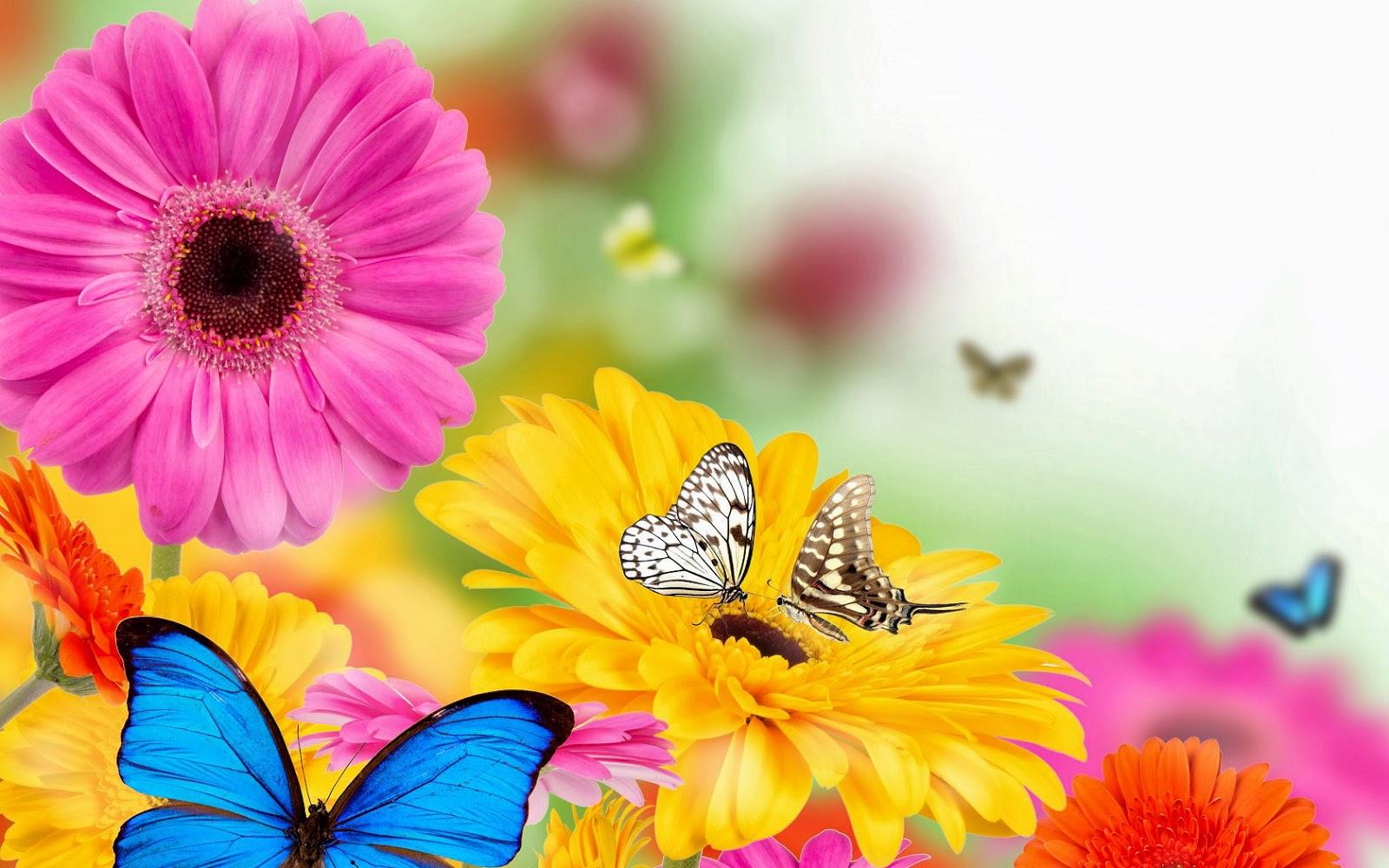 Verschillende soorten vlinders en kleuren bloemen