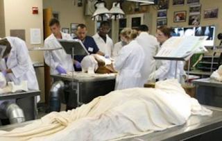 Επιστήμονες ανακοίνωσαν ότι θα αναστήσουν νεκρούς