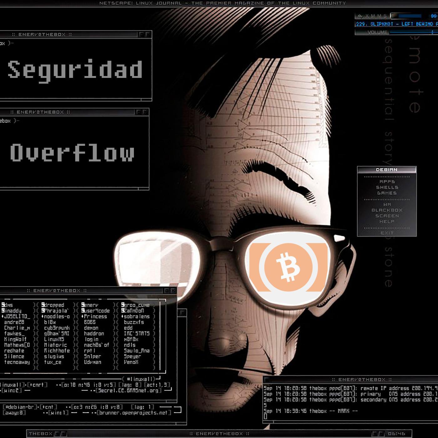 Seguridad Overflow