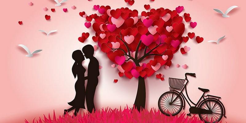 لأن الحب وحده لا يكفي