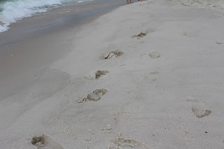 Foot Prints In The Sand, Living From Glory To Glory Blog...