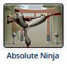 http://www.miniclip.com/games/absolute-ninja/en/#t-c-f-C