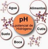 pH, quimica, potencial, hidrogeno, peter sorensen, escala ph, medir ph, indicadores, tecnologia ph, ph del agua, ph en la boca, ph en el suelo, ph alimentos, ph cutis, ph piel