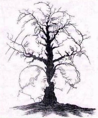 Natural Optical Illusion of Hidden Faces