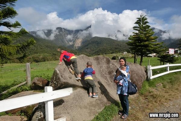 Kundasang di Desa Dairy Farm Mesilau