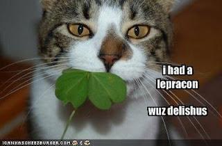 St-Patricks-day2018-cat-meme-2018-funny