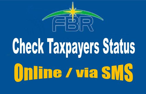 check-taxpayers-status