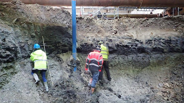 Excavations for Copenhagen Metro dig up evidence of interglacial period