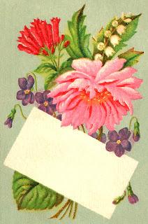 flower wildflower image blank label download