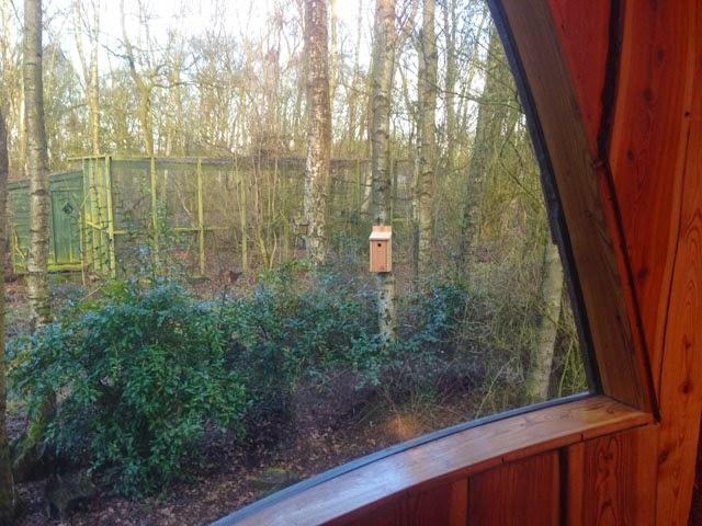 how to hang a bird box 1