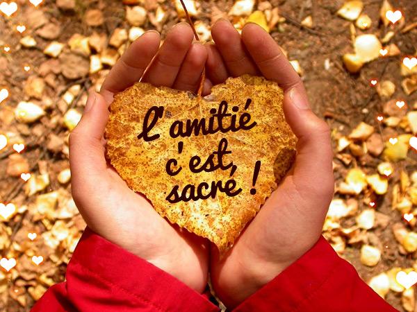 Image d 39 amour petite citation cl de l 39 amiti l 39 amiti - Image d amour gratuite ...