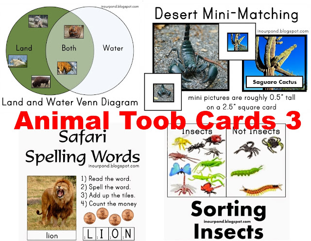 Safari Ltd Toob Ideas from In Our Pond