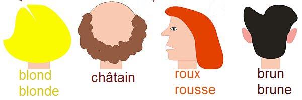 Przymiotniki dotyczące wyglądu - słownictwo 6 - Francuski przy kawie