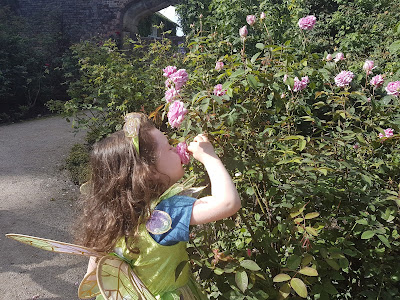 How To Prune Roses...