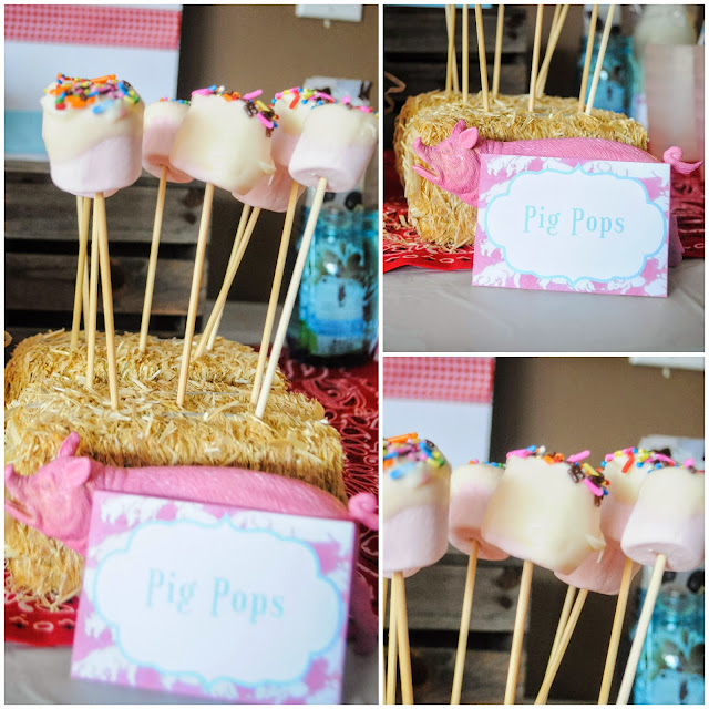 pig pops for a Charlotte's web birthday party
