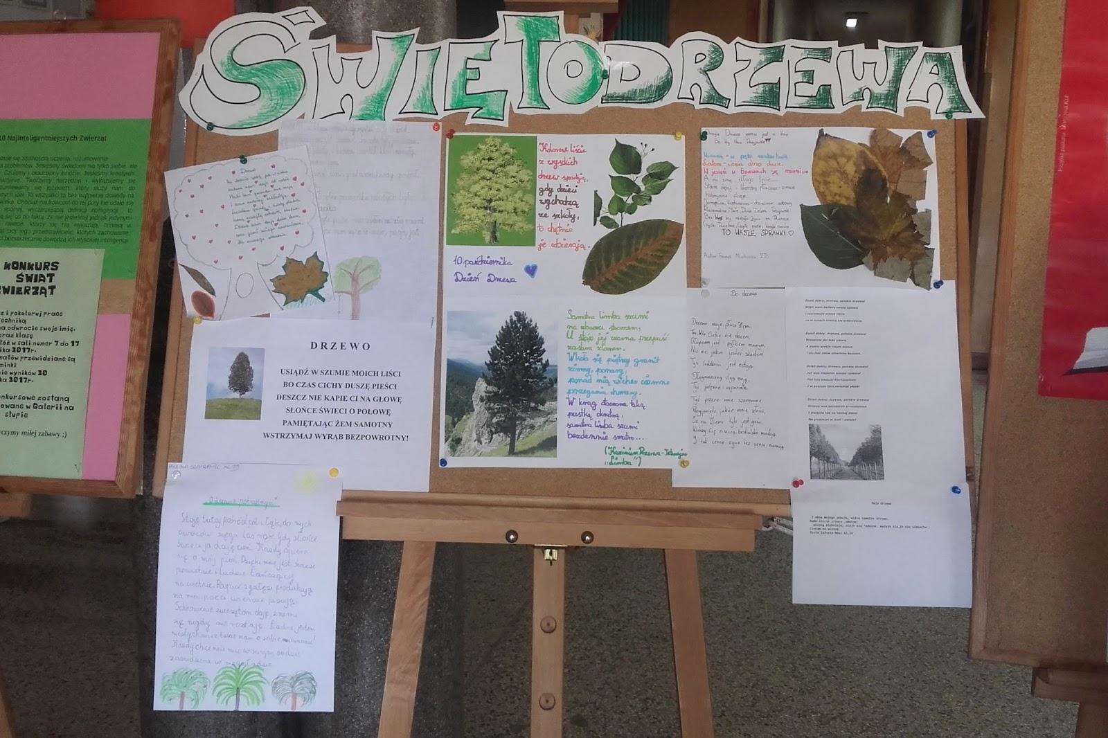 Szkolne Koło Krajoznawczo Turystyczne Powsinogi święto Drzewa