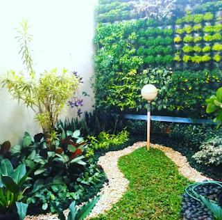 taman vertikal dengan taman minimalis