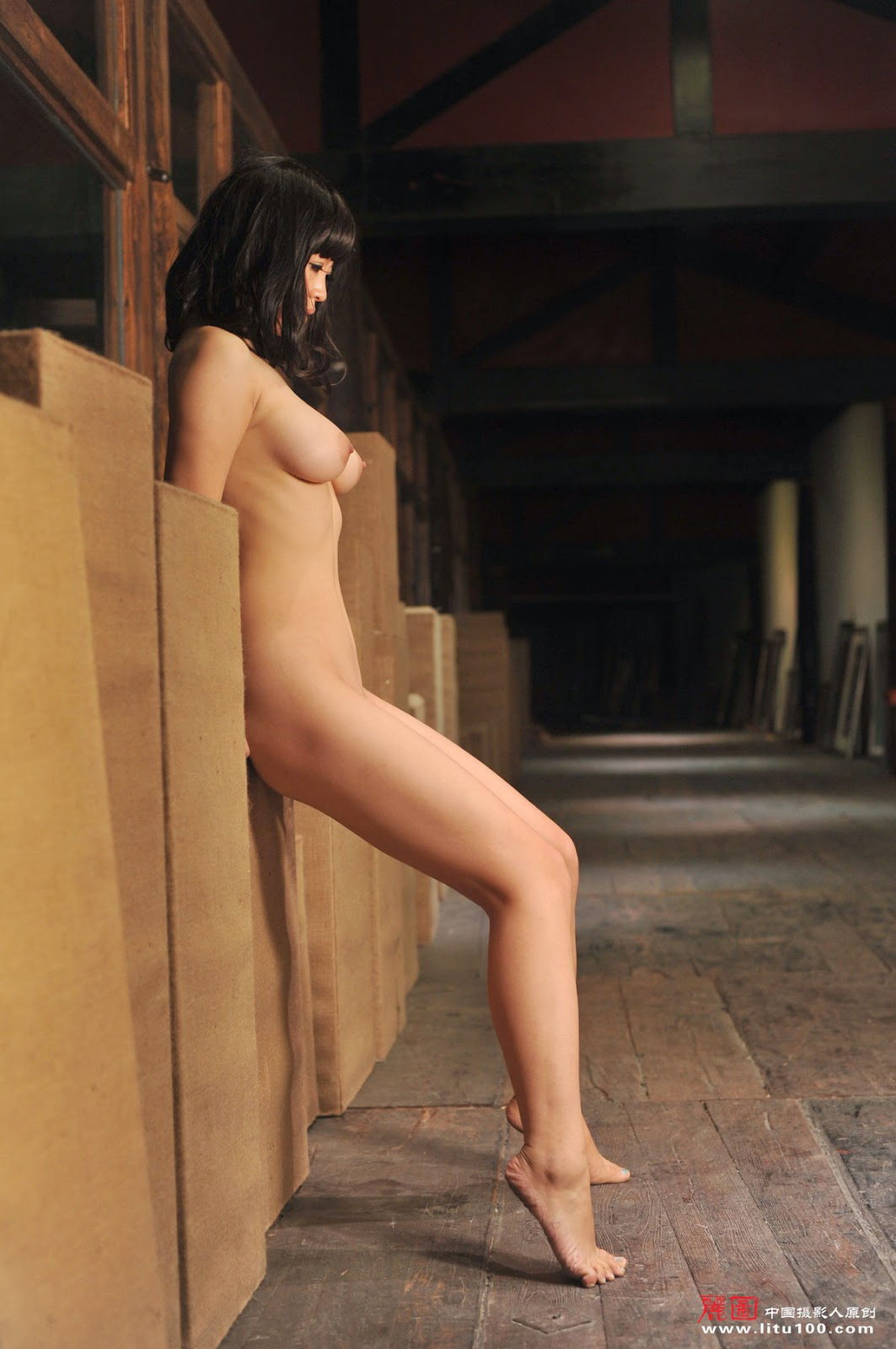 DSC 7301 - Chinese Nude Model Su Quan [Litu100]   18+ gallery photos
