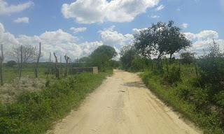 Bandidos arrombam cerca e roubam cinco animais de agricultor na zona rural e Nova Floresta