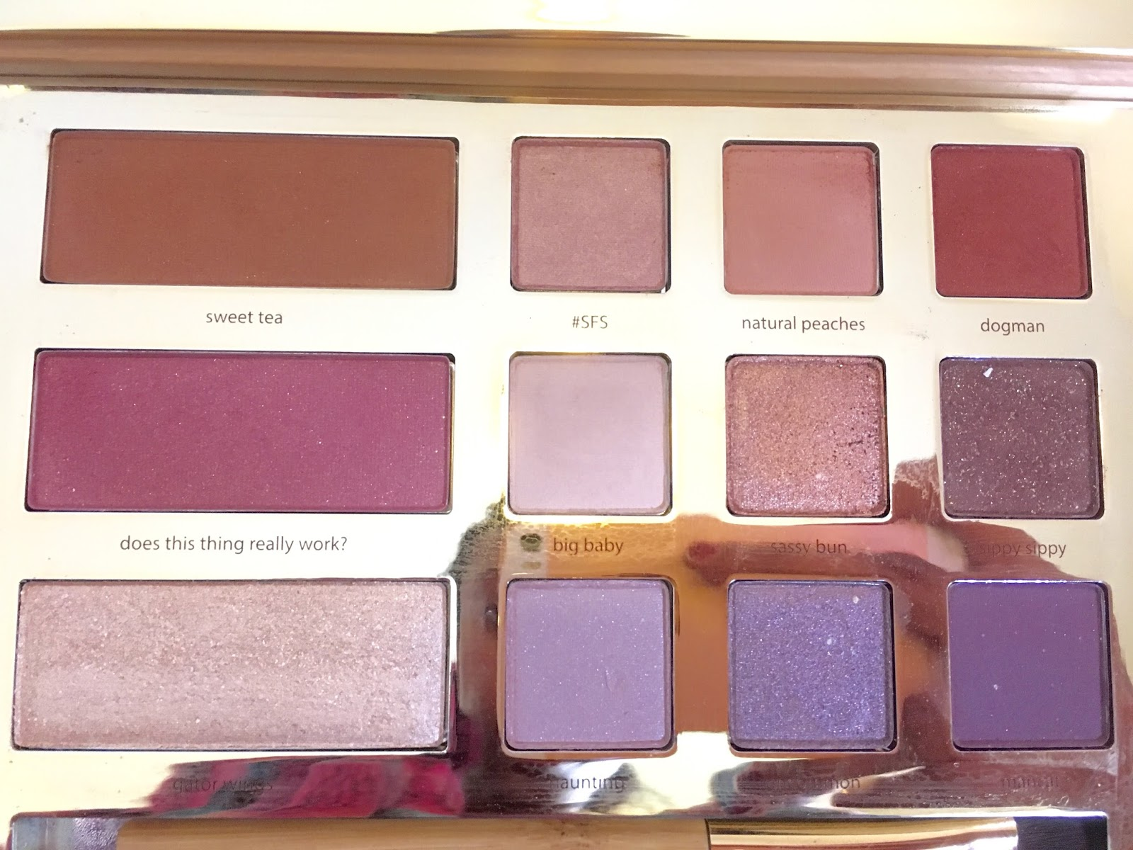 Beauty By Amera Tarte Swamp Queen Eye And Cheek Palette Review