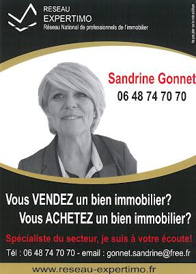http://sandrinegonnet.blogspot.fr/