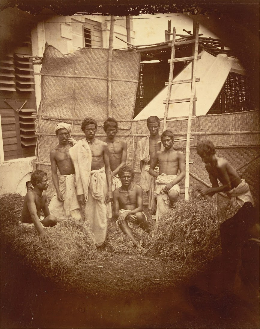 Group of Men of an Unidentified Caste Posed Among the Piles of Straw - Eastern Bengal c1860