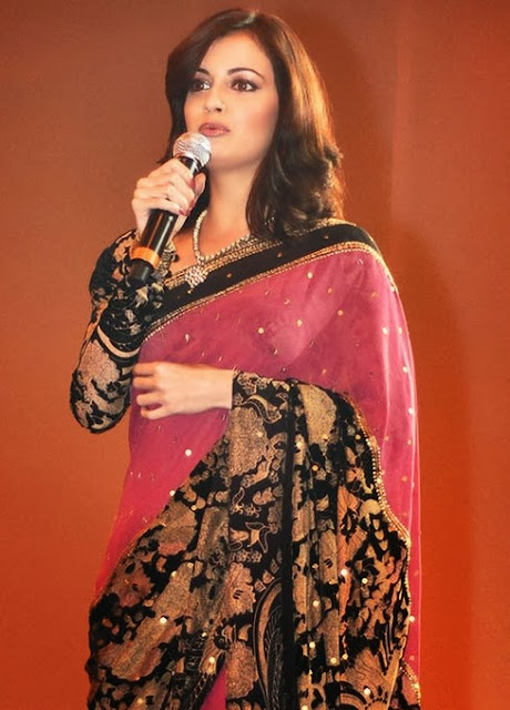 Diya Mirza beautiful saree