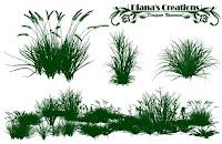 grass brushes photoshop