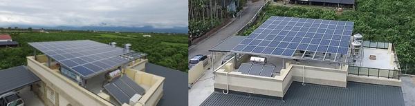 農地型光電大棚下方可種植低日照、或不必日照的作物。