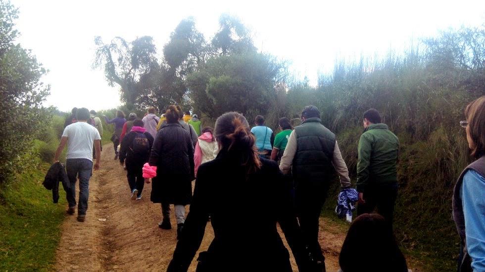 Ser una agradable caminata en un espeso bosque for Espectaculo de luciernagas en tlaxcala