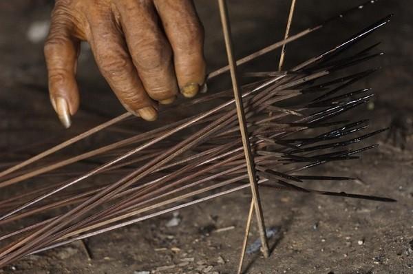 Bộ tộc Huaorani che tờ chim bằng lá cây 14