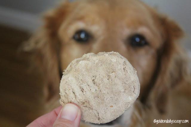 freeze dried raw dog food diet