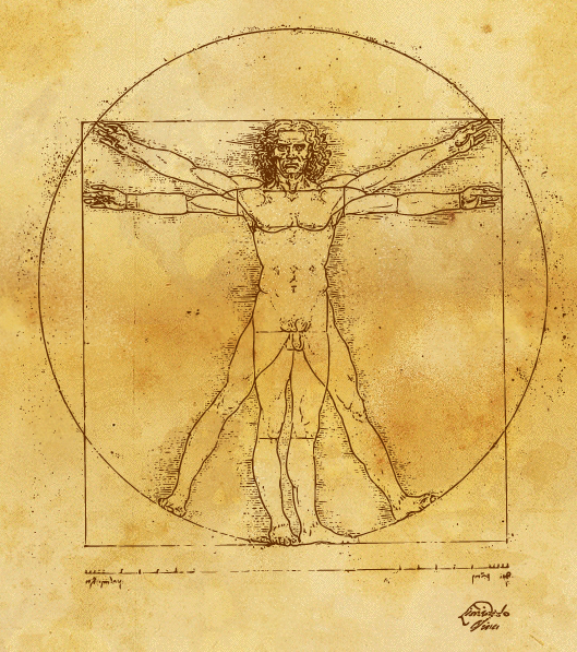 a critical response to vitruvius The author of what is thought to be the first book on architecture was a first century bce roman architect named marcus vitruvius a 21st century response to.