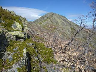 Pico Ocejón. Llegando a Cabeza del Mostajar