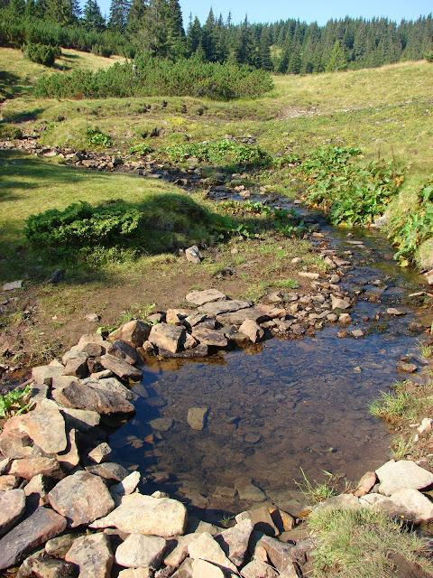 Полонина Рущина, река Быстрица Солотвинская