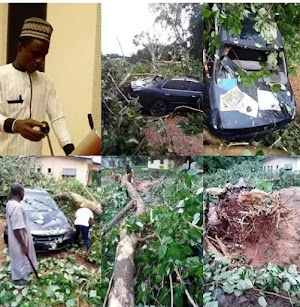 Spiritual Attack: Narrow escape, as big tree falls on lawmaker's vehicle while reversing .