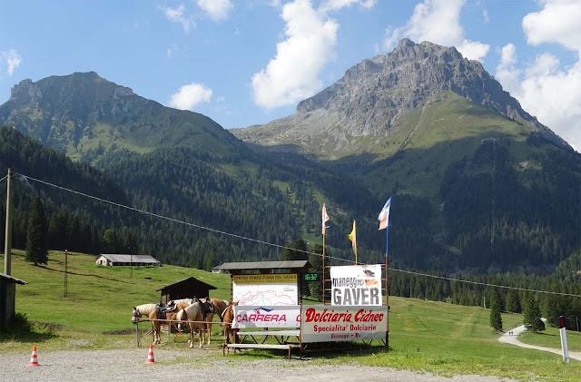 Reitpferde in Bagolino, Gaver vor hohen Bergketten und grünen Wiesen in Italien, Croce Domini Passo