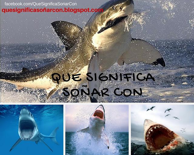 cual es el significado de soñar con tiburones de mas