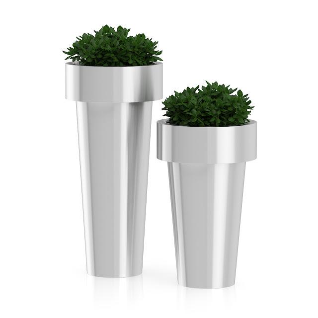 3D model free -  Plants_20
