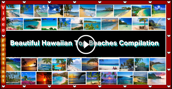 Beautiful Hawaiian Beaches Compilation