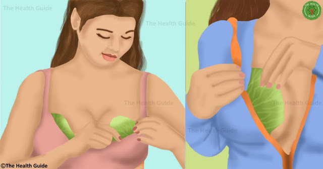 She Started Putting Cabbage On Her Chest And The Result Is So Incredible! Must Try!