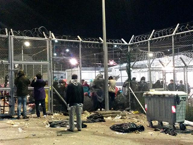 Αναβρασμός και πάλι στη Λέσβο! Λαθρο μετανάστες επενδυτες κλπ έσφαξαν τα ζώα των κατοίκων και τώρα πλακώνονται μεταξύ τους [ΦΩΤΟ]
