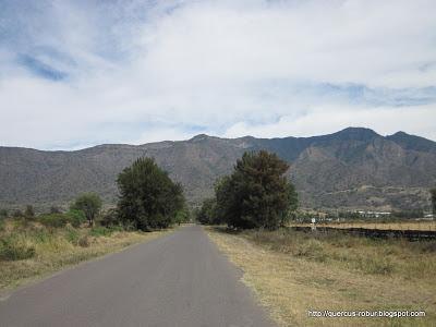 Cerro Viejo desde el camino Jocotepec - Huejotitán