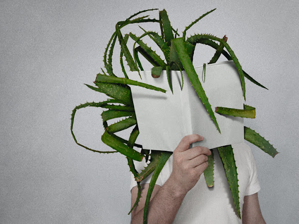 The Power of Books - fotos de Mladen Penev