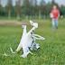 Cara Mengatasi Masalah yang Sering Terjadi pada Drone