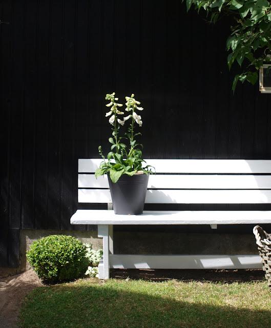 Sådan kan du gratis gøre haven lækker